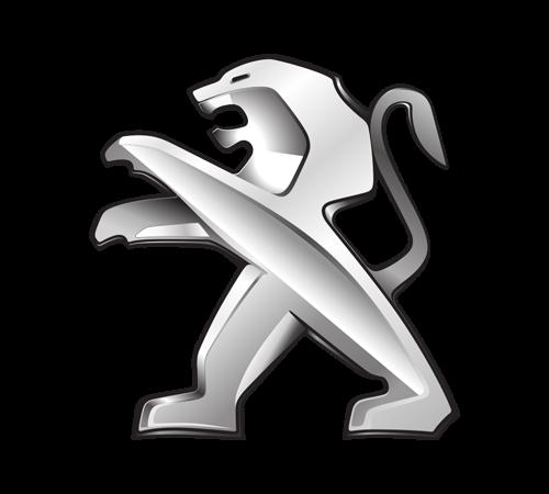 Peugeot Hinterachse