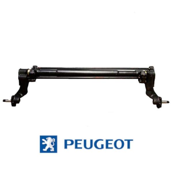 Hinterachse-Peugeot-306-600x600